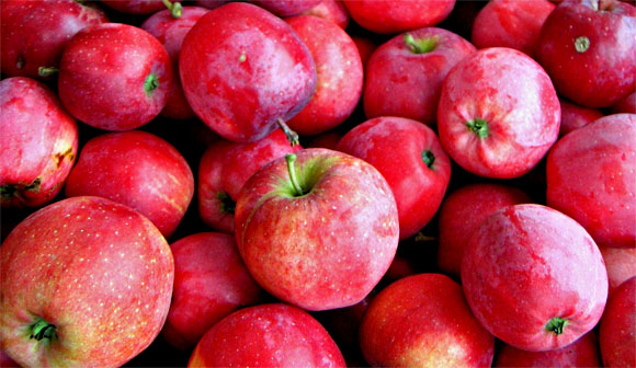 Esst mehr Äpfel, Foto: Dezidor, CC-BY-3.0