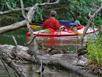 Paddeln auf verwunschenen Flüssen im Nordosten von Polen, Foto: Polska Organizacja Turisticzna