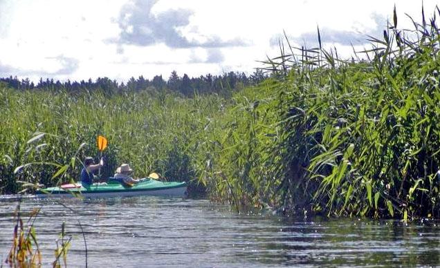 Wasserwandern auf der Biebrza, Foto: AS-Tour